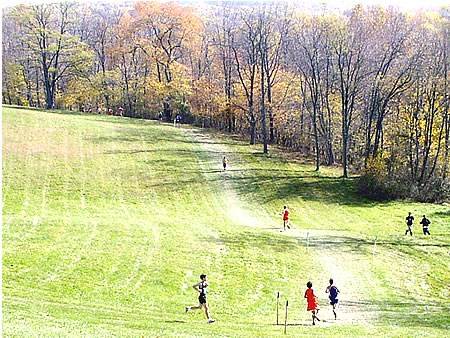Hereford Hills 2002 Maryland Cross Country Dyestat
